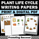 All About Plants Life Cycle Worksheets Spring Summer Writing Paper Digital Print