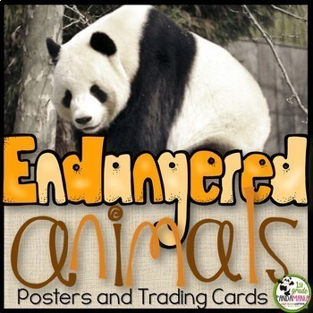 Endangered Animals Information Posters and Trading Cards