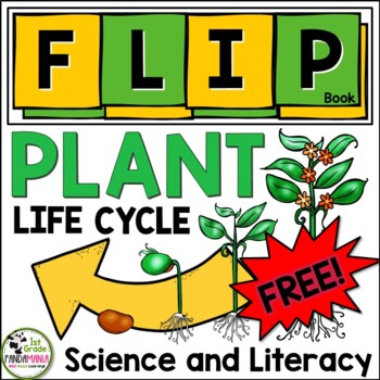 Plant Life Cycle FLIP Book