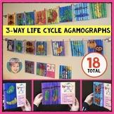 3-Way Life Cycle Agamograph Collection w/ frog, plants, bu