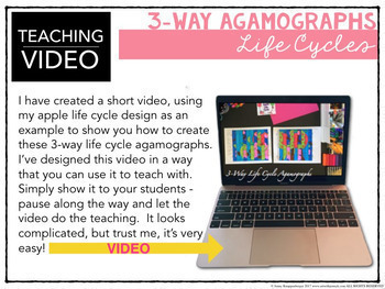 3-Way Life Cycle Agamograph Collection (w/ butterfly life cycle) Fun for Spring!