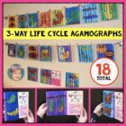 Life Cycle Agamographs - Plants, Frog  Life Cycle, Butterfly Life Cycle & More!