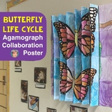 Butterfly Life Cycle 3-Way Agamograph Poster - Fun & Unique Spring Activity!