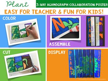 PLANT LIFE CYCLE 3-Way Agamograph Collaboration Poster