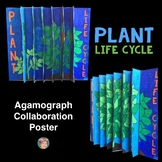 PLANT LIFE CYCLE 3-Way Agamograph Collaboration Poster