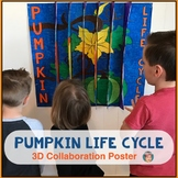 Pumpkin Life Cycle 3D Collaboration Poster - Great Fall Cr