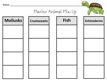 50 Page Seashore Life Posters/Activities/Vocabulary