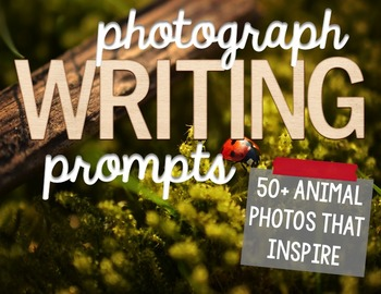 50+ Photograph Writing Prompts - Animals