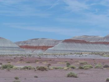 Petrified Forest~Painted Desert~Grand  Canyon~Arizona~Photograph for Commercial
