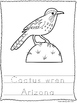 50 State Bird Trace and Color Worksheets Geography Curriculum.