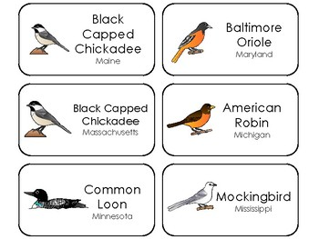 50 State Birds Printable Flashcards. US History.
