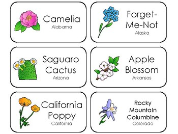 graphic relating to 50 States Flash Cards Printable named 50 Region Bouquets Printable Flashcards. Place Symbols Curriculum.