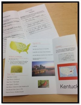 States Brochure Project