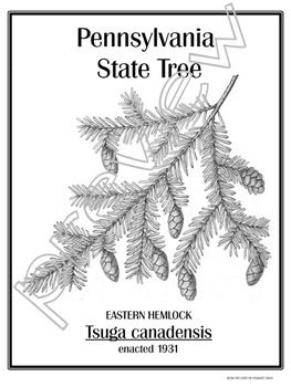 50 State TREES Posters: Learn About Your State