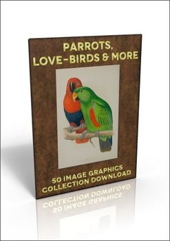 50 colour out-of-copyright images of parrots to use for anything!