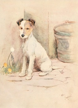 50 colour public domain Cecil Aldin dogs and horses etc to