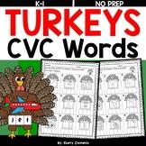 Turkey CVC Words (Write the Word)