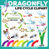Dragonfly Life Cycle ClipArt for Printable and Digital Resources