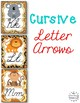Cursive Posters , Worksheets, & Editable Bunting {Jungle Z