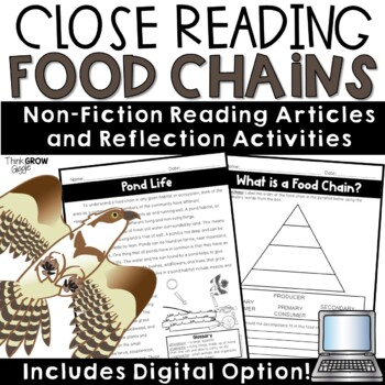 Food Chain Reading Comprehension and Activities