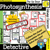 Photosynthesis Detective-3 Domino Path Matching Activities-Forest Theme