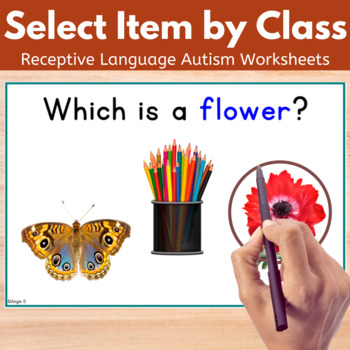 Receptive Language Worksheets - Select Item by Class
