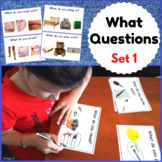 What Questions Autism Worksheets Set 1, Speech Therapy