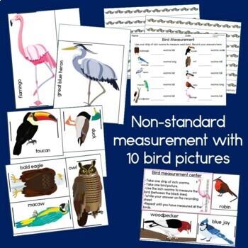 Measurement Centers: Birds, Nonstandard units of measure