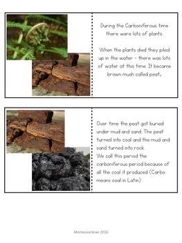 Paleozoic Era Bundle