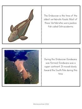 Paleozoic Era : Ordovician Period