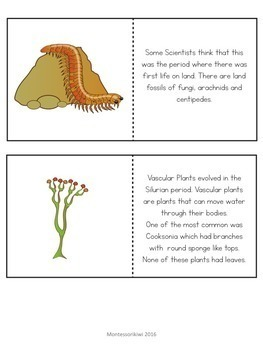 Paleozoic Era : Silurian Period