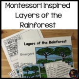 Rainforest Layers 3 Part Cards