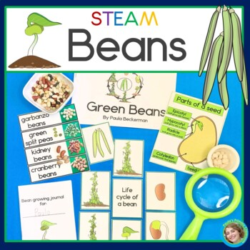 Beans STEAM Investigations