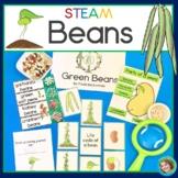 Beans STEM / STEAM activities