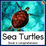 Sea Turtles 2 Differentiated Guided Reading Books for Science