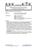 5108-10 Physical and Cultural Geography of North America