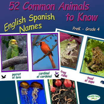 52 Common Animals to Know – Includes English and Spanish Names
