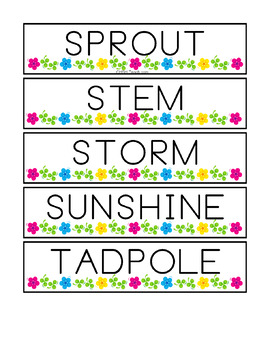 56 Spring Vocabulary Words - Word Wall