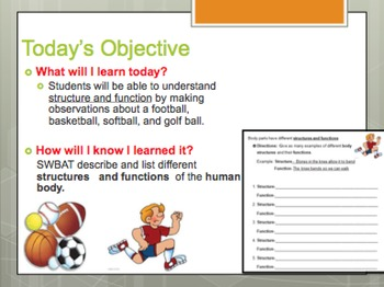Human Body Structures and Functions 5E Lesson PowerPoint and Worksheet Day 1