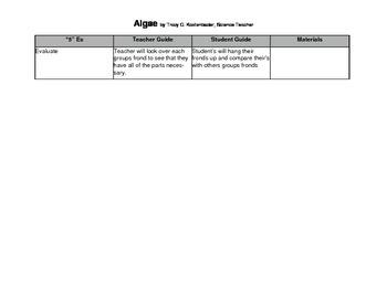 5E lesson plan for Algae / Seaweed