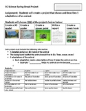 5G Science Spring Break Project Sheet and Rubric