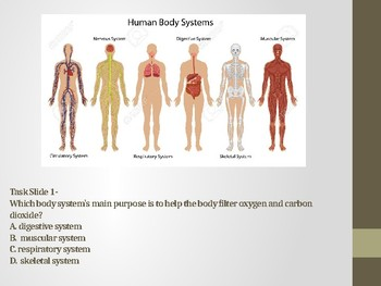5L.1.2 Mix and Mingle Human Body Systems