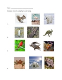 5S-LPS-3-A Virginia Plants and Animals