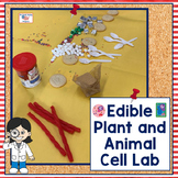 Edible Plant and Animal Cell Lab Activity