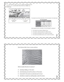 5th Grade 2009-2010 Science OAA Task Cards