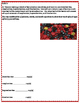 5th Grade 4th Quarter Common Core Math Assessment [ANSWER KEY INCLUDED]