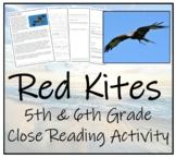 5th-7th Grade Close Reading Activity; Birds of Prey - Red Kites