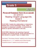 5th Grade Common Core Reading/ELA Test Prep RI3 and RI4