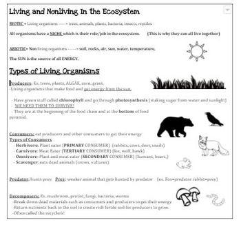 5th Grade Common Core Science Resource