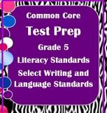 5th Grade ELA Common Core Test Prep: Literary, Writing, an